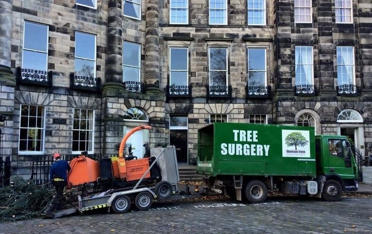 commercial tree surgeons
