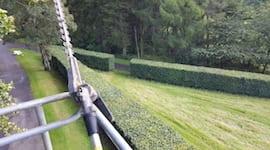 hedge cutting edinburgh