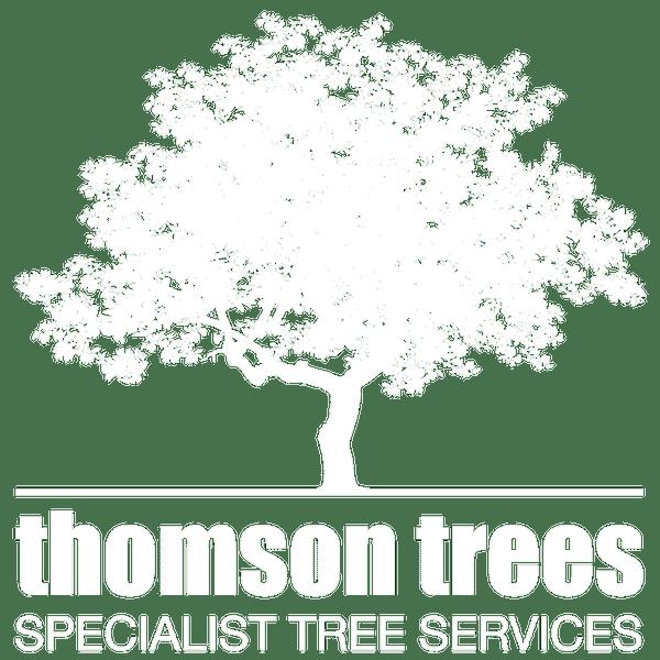 thomson trees edinburgh