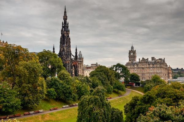 Tree Surgeon Edinburgh