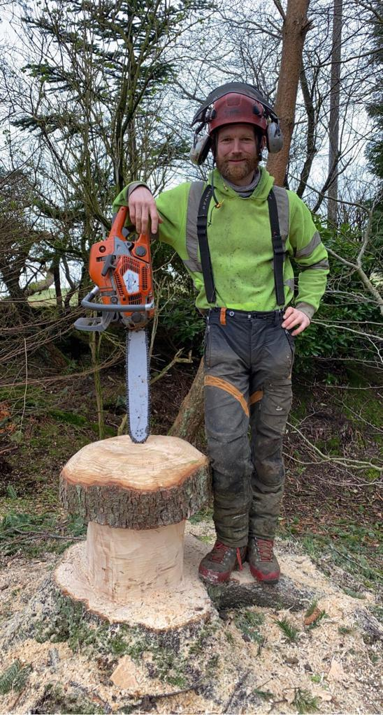 felling conifer trees in ninemilenburn.